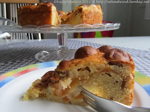 Aprikosen & Amarettini-Kuchen(2)