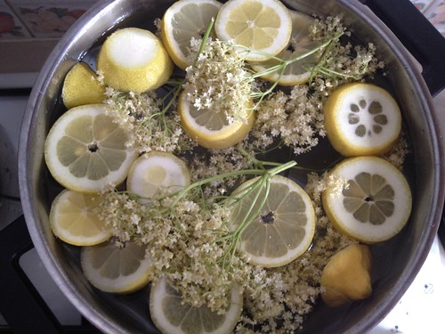 Elderflower wine - brewing