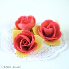 Pink wafer roses
