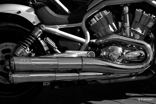 Harley Davidson - Detail