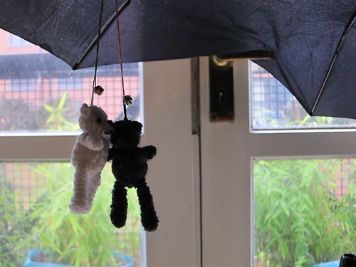 brolly bears