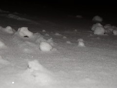 Esett a hó 3