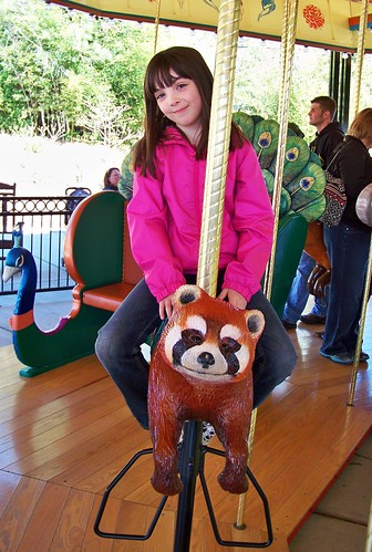 Julia on the red panda