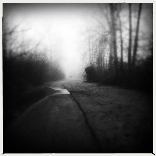 Fog Walkers