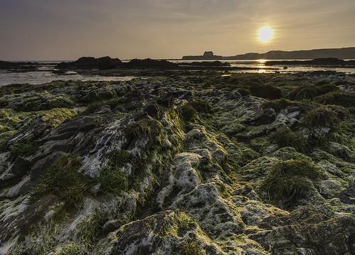 sunset beach church wales landscape coast rocks algae anglesey llangwyfan aberffraw stcwyfans churchinthesea porthcwyfan