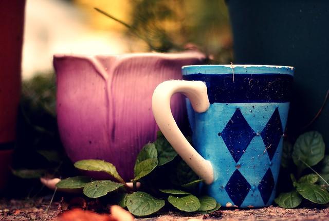 pottery, Nikon D1X, AF Nikkor 50mm f/1.8D