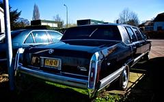 automobile(1.0), automotive exterior(1.0), cadillac(1.0), wheel(1.0), vehicle(1.0), automotive design(1.0), full-size car(1.0), sedan(1.0), land vehicle(1.0), luxury vehicle(1.0), limousine(1.0), motor vehicle(1.0),