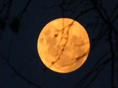 Moon a-glow by crisscrossgirl