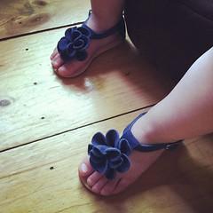 Brynn's new kicks. #omg