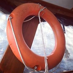 wheel(0.0), personal flotation device(0.0), orange(1.0), lifebuoy(1.0), circle(1.0),