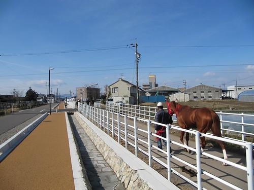 Kasamatsu Racecourse 笠松競馬場
