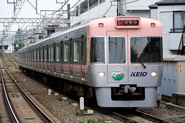 京王電鉄井の頭線1000系1003F あじさいライトアップHM取付