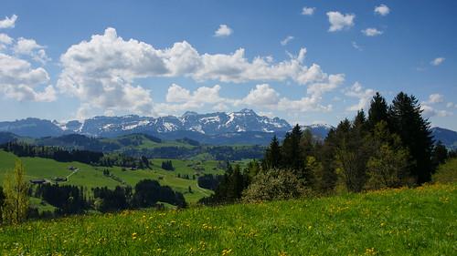 panorama schweiz panoramas alpen wandern aussichtspunkt säntis waldegg bergpanorama aussichten ausflugsziel kantonappenzell sonydslra700 wanderparadies schnuggenbock schweizertourismus waldeggteufenar