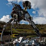 Cornwall 2012-8714