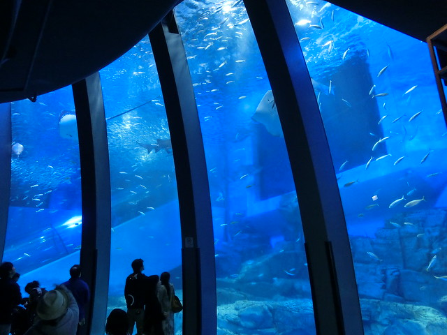 八景島シーパラダイス/Sea Pradise Aquarium Hakkeijima, Japan