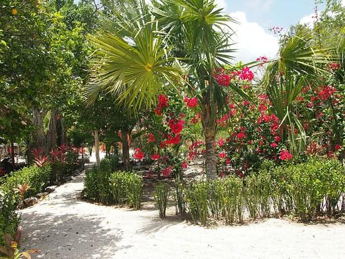 Playa del Carmen-13