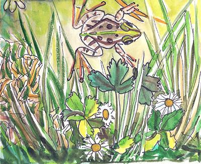 Frog - Grenouille 001 by alain bertin