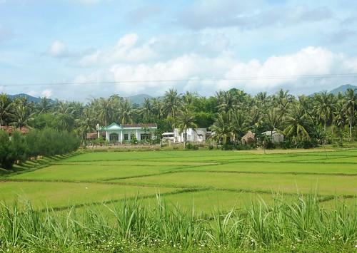 V-Route Quy Nhon-Da Nang (15)