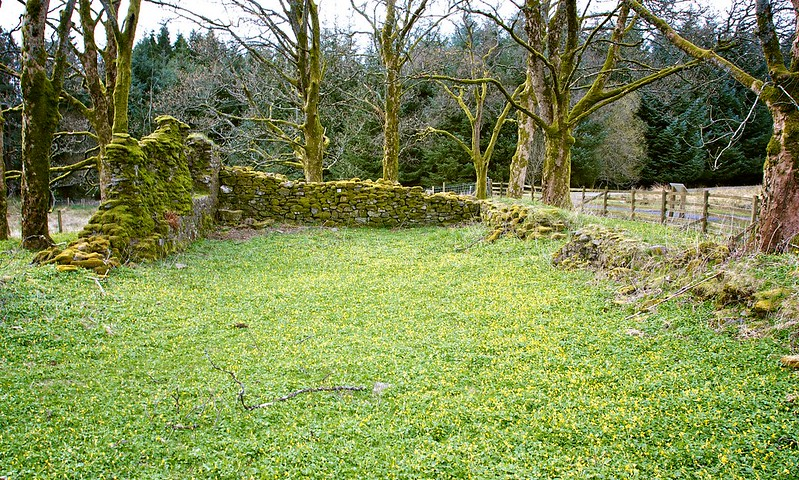 Ruins of St Fillan's Priory