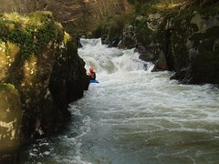Mike on Cenarth Falls Image