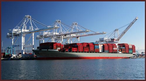 """A Ship Named """"Bay Bridge"""""""