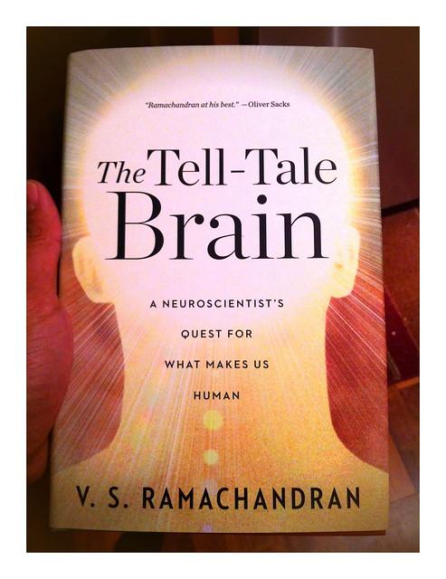 Tell Tale Brain
