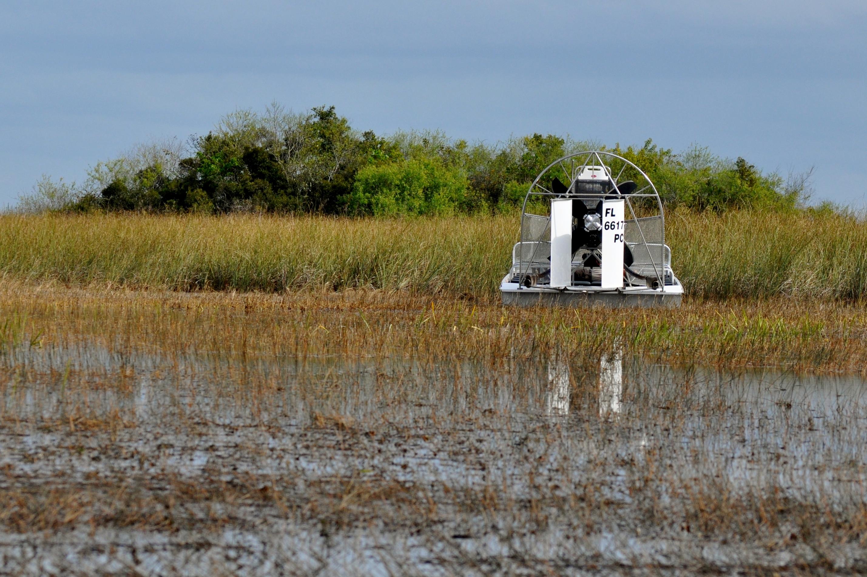 Everglades Safari Tour Review