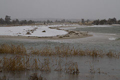 20101228 - Paines Creek Erosion