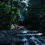 Trekking Along the Waterfalls in Gavi Forests, Kerala..