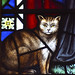 Cat by mira66