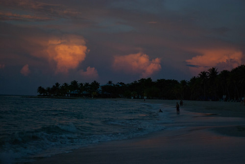 trees beach water sand sunsetatlanticoceanpuertaplatadominicanrepublic