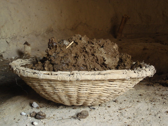 Dung collected in India