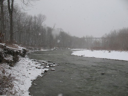 Fly fishing report from elk creek pennsylvania for Fly fishing pa
