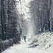 Snowy Alley. Pirot, Serbia. by Tanjica Perovic