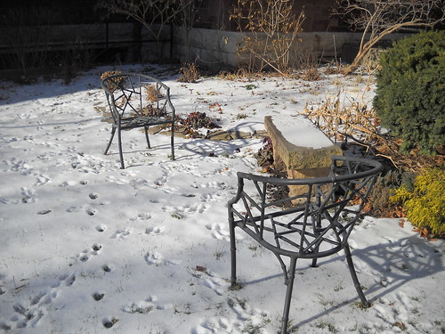 lawn and garden winter tips