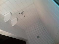 daylighting(0.0), swimming pool(0.0), ceiling(0.0), bathtub(0.0), shower(0.0), floor(1.0), plumbing fixture(1.0), design(1.0), tile(1.0), bathroom(1.0), flooring(1.0),