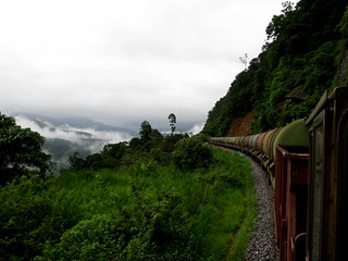 Nature and Train.....