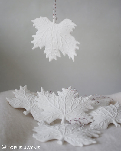 Snowy White Leaves