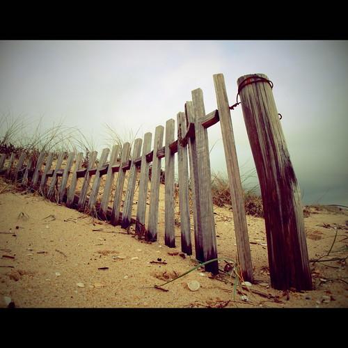 wood sky praia beach portugal fence landscape faro wooden sand areia dunes sony dune shell paisagem céu explore algarve duna vignetting rui joão dunas fallingdown vigneting praiadefaro ilhadefaro vinhetagem estevas wintertales windsandandwater kspa ilustrarportugal sérieouro sonycybershotw170 joãoreganha portugalmagico portugalmágico reganha mygearandmepremium mygearandme1 dedicadaaoruiestevas devotedtoruiestevas 024713