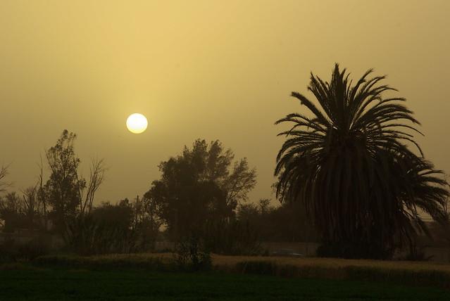 Morning close to Agadir