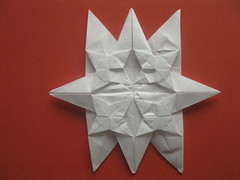 4 Point Star Tessellated