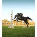 +[ Horse Jumping ]+ by Mahmood Alnajjar (wain alwefa)