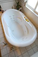 Tub (After Images)