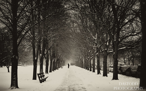 park christmas winter blackandwhite bw snow chicago cold ice bench landscape illinois december boulevard perspective chilly southside hydepark universityofchicago midway avenue 2010 plaisance chicagoist chicagoreader timeoutchicago