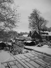 Bremen December 2010