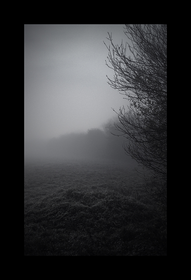 Photography: Night Fog by Nicholas M Vivian