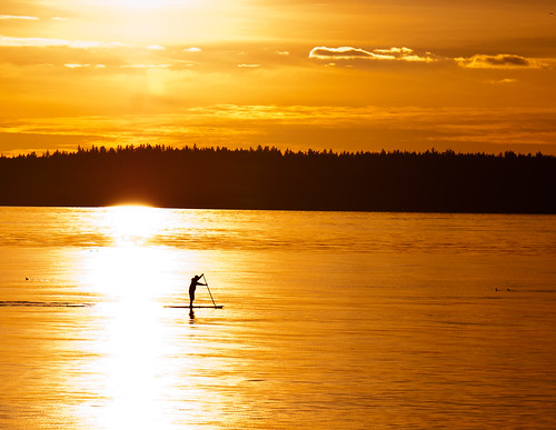 sunset silhouette washington alki westseattle pugetsound paddleboard paddleboarder