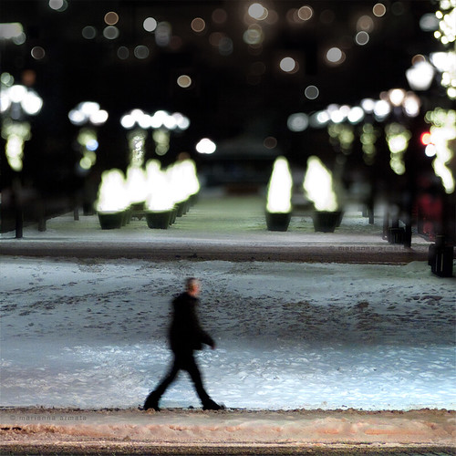 christmas old city trees winter urban man color male silhouette night walking landscape lights bokeh montreal pedestrian single figure format squre