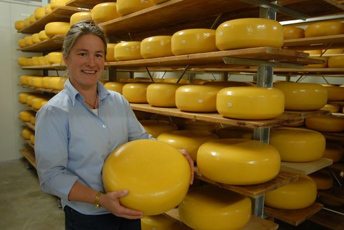 Di and Cheese store