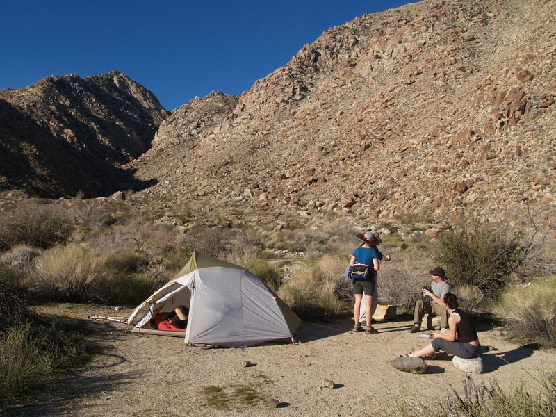 Looking up Cougar Canyon from a nice campsite